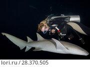 Купить «Female scuba diver looks at nurse shark in the night. Tawny nurse shark, Giant sleepy shark or Madame X (Nebrius ferrugineus)», фото № 28370505, снято 24 марта 2018 г. (c) Некрасов Андрей / Фотобанк Лори