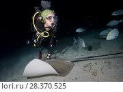 Купить «Female scuba diver swims with stingray in the night. Pink whipray or Banana-tail ray (Himantura fai)», фото № 28370525, снято 2 апреля 2018 г. (c) Некрасов Андрей / Фотобанк Лори