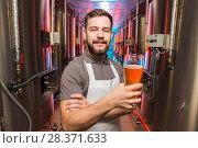 Купить «beer alcohol brewery», фото № 28371633, снято 24 апреля 2018 г. (c) Mark Agnor / Фотобанк Лори
