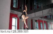 Купить «Young sexy woman performing pole dance whirling on a pole in a studio», видеоролик № 28389101, снято 22 июля 2019 г. (c) Константин Шишкин / Фотобанк Лори