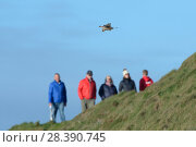 Купить «Kestrel (Falco tinnunculus) hovering near cliff edge with walkers on the coast path in the background, Cornwall, UK, April.», фото № 28390745, снято 18 июля 2018 г. (c) Nature Picture Library / Фотобанк Лори