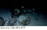 Купить «Female scuba diver look at shark and rays at night. Tawny nurse sharks (Nebrius ferrugineus) and Pink whipray (Himantura fai), Indian Ocean, Maldives», видеоролик № 28391917, снято 25 марта 2018 г. (c) Некрасов Андрей / Фотобанк Лори