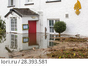 Купить «The Wateredge Inn surrounded by flood water after Lake Windermere burst its banks in Ambleside in the Lake District on Sunday 6th December 2015, after...», фото № 28393581, снято 25 мая 2018 г. (c) Nature Picture Library / Фотобанк Лори