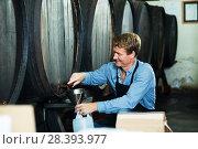 Купить «Male seller in wine cellar», фото № 28393977, снято 23 июля 2018 г. (c) Яков Филимонов / Фотобанк Лори