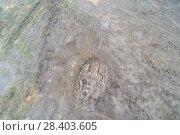 Купить «Руины Кондуйского дворца, с высоты птичьего полета», фото № 28403605, снято 12 мая 2018 г. (c) Геннадий Соловьев / Фотобанк Лори