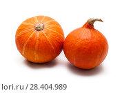 Купить «Colorful pumpkin and squash, Red Kuri, Kabocha,», фото № 28404989, снято 19 октября 2017 г. (c) Сурикова Ирина / Фотобанк Лори