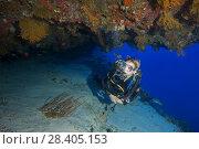 Купить «Female scuba diver peeks into a cave with beautiful corals», фото № 28405153, снято 13 марта 2018 г. (c) Некрасов Андрей / Фотобанк Лори