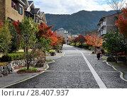 Купить «Residential houses in a modern suburban neighbourhood in fall at Daigonishiojicho, Fushimi-ku, Kyoto, Japan.», фото № 28407937, снято 21 ноября 2017 г. (c) age Fotostock / Фотобанк Лори