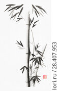 Купить «Minimalistic bamboo stalks with leaves artistic oriental style illustration, Japanese Zen Sumi black ink painting on white rice paper background.», фото № 28407953, снято 28 января 2018 г. (c) age Fotostock / Фотобанк Лори