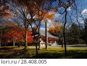 Купить «Kondo, central hall of Shimo-Daigo part of Daigoji complex in colorful autumn nature scenery. Daigo-ji, Shingon Buddhist temple in Fushimi-ku, Kyoto, Japan.», фото № 28408005, снято 21 ноября 2017 г. (c) age Fotostock / Фотобанк Лори