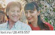 Купить «Smiling mother and her adult daughter», видеоролик № 28419557, снято 2 мая 2018 г. (c) Илья Шаматура / Фотобанк Лори