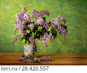Bouquet of spring purple Lilac in a vase isolated on a painted background. Стоковое фото, фотограф Сергей Бочаров / Фотобанк Лори
