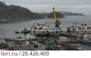 Купить «Буксиры помогают рыболовному судну причалить в морском порту», видеоролик № 28426409, снято 17 мая 2018 г. (c) А. А. Пирагис / Фотобанк Лори