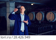 Купить «Sommelier tasting red wines in winery basement», фото № 28426949, снято 22 января 2018 г. (c) Яков Филимонов / Фотобанк Лори