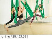 Купить «Young women performing antigravity yoga exercise», фото № 28433381, снято 13 мая 2018 г. (c) Владимир Мельников / Фотобанк Лори