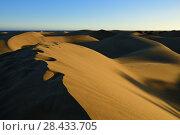 Dune Maspalomas, Gran Canaria (2014 год). Стоковое фото, фотограф Знаменский Олег / Фотобанк Лори