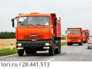 Купить «KAMAZ 65115», фото № 28441513, снято 20 августа 2011 г. (c) Art Konovalov / Фотобанк Лори
