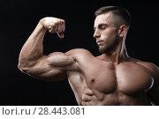 Купить «Handsome power athletic man bodybuilder demonstrates his biceps.», фото № 28443081, снято 16 марта 2018 г. (c) Restyler Viacheslav / Фотобанк Лори