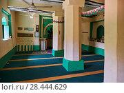 Tanzania, Zanzibar island, Unguja, Kizimkazi village, Chirazi mosque, older mosque in East Africa. Стоковое фото, фотограф Philippe Michel / age Fotostock / Фотобанк Лори