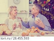 Купить «couple at the table celebrating Christmas and New Year at home», фото № 28455593, снято 19 марта 2019 г. (c) Яков Филимонов / Фотобанк Лори