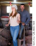 Купить «Farmer standing in pigsty», фото № 28460169, снято 16 октября 2018 г. (c) Яков Филимонов / Фотобанк Лори