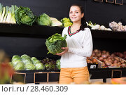 Купить «Young female customer examining various cabbages», фото № 28460309, снято 23 ноября 2016 г. (c) Яков Филимонов / Фотобанк Лори