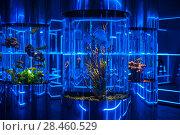Купить «oceanarium interior photo», фото № 28460529, снято 10 июня 2017 г. (c) Jan Jack Russo Media / Фотобанк Лори