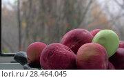 Купить «Old apples in bowl and late autumn outside», видеоролик № 28464045, снято 22 мая 2019 г. (c) Данил Руденко / Фотобанк Лори