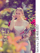 Купить «young female gardener caring roses», фото № 28468057, снято 22 апреля 2019 г. (c) Яков Филимонов / Фотобанк Лори