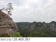 Купить «Национальный парк Саксонская Швейцария. Германия.», фото № 28469381, снято 3 мая 2018 г. (c) Воробьева Анна / Фотобанк Лори