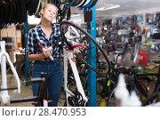Купить «Female master is cheking wheel of bicycle», фото № 28470953, снято 13 сентября 2017 г. (c) Яков Филимонов / Фотобанк Лори