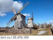 Купить «Деревянные ветряные мельницы в музее под открытым небом Англа (Angla) на острове Сааремаа, Эстония», фото № 28476189, снято 27 марта 2018 г. (c) Кекяляйнен Андрей / Фотобанк Лори