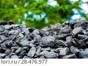 Купить «pile of coal - natural black background», фото № 28476977, снято 17 августа 2017 г. (c) Константин Лабунский / Фотобанк Лори