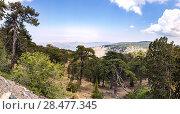 Купить «Кипр, Горы Троодас. Панорамный вид с горы Олимп (самая высокая точка Кипра)», фото № 28477345, снято 15 мая 2018 г. (c) Юрий Кирсанов / Фотобанк Лори