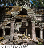 Купить «Ruins of temple, Krong Siem Reap, Siem Reap, Cambodia», фото № 28479661, снято 18 декабря 2016 г. (c) Ingram Publishing / Фотобанк Лори