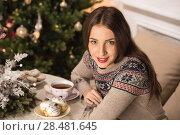Купить «Beautiful woman wearing winter outfit drinking tea with candy at home near Christmas tree», фото № 28481645, снято 12 ноября 2014 г. (c) Ingram Publishing / Фотобанк Лори