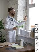 Купить «Doctor working with ct scan at hos workplace», фото № 28483345, снято 5 июня 2015 г. (c) Ingram Publishing / Фотобанк Лори