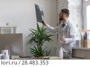 Купить «Closeup portrait of intellectual man healthcare personnel with white labcoat, looking at brain x-ray radiographic image, ct scan, mri, clinic office background. Radiology department», фото № 28483353, снято 5 июня 2015 г. (c) Ingram Publishing / Фотобанк Лори