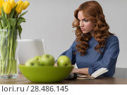 Купить «Closeup portrait of a beautiful young redhead woman working using laptop at her desk at office», фото № 28486145, снято 26 февраля 2015 г. (c) Ingram Publishing / Фотобанк Лори