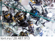 Image of stand with good baitcasting reel. Стоковое фото, фотограф Яков Филимонов / Фотобанк Лори