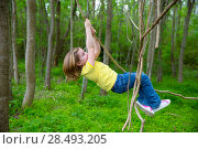 Купить «Children girls playing hanging and climbing from lianas at the jungle forest park outdoor», фото № 28493205, снято 24 января 2019 г. (c) Ingram Publishing / Фотобанк Лори