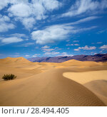 Купить «Mesquite Dunes desert in Death Valley National Park California», фото № 28494405, снято 18 июля 2019 г. (c) Ingram Publishing / Фотобанк Лори