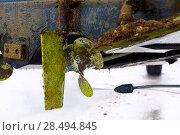 Купить «Boat stern hull and propeller pressure water cleaning on beached ship», фото № 28494845, снято 7 мая 2013 г. (c) Ingram Publishing / Фотобанк Лори