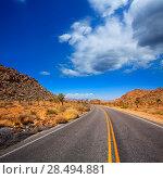 Joshua Tree boulevard Road in Yucca Valley desert California USA (2013 год). Стоковое фото, фотограф Tono Balaguer / Ingram Publishing / Фотобанк Лори