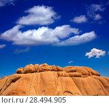 Joshua Tree National Park Jumbo Rocks in Yucca valley Mohave Desert California USA (2013 год). Стоковое фото, фотограф Tono Balaguer / Ingram Publishing / Фотобанк Лори