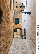 Menorca Ciutadella carrer del Palau barrel vault at Balearic islands (2013 год). Стоковое фото, фотограф Tono Balaguer / Ingram Publishing / Фотобанк Лори