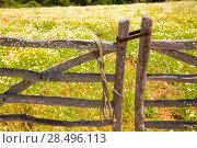 Menorca traditional wooden gate in spring at  Balearic islands of Spain. Стоковое фото, фотограф Tono Balaguer / Ingram Publishing / Фотобанк Лори