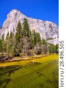 Купить «Yosemite Merced River and el Capitan in California National Parks US», фото № 28496505, снято 18 апреля 2013 г. (c) Ingram Publishing / Фотобанк Лори