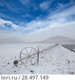 Купить «Cereal fields with irrigation wheels with snow in Nevada USA», фото № 28497149, снято 16 апреля 2013 г. (c) Ingram Publishing / Фотобанк Лори