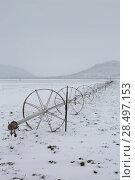 Купить «Cereal fields with irrigation wheels with snow in Nevada USA», фото № 28497153, снято 16 апреля 2013 г. (c) Ingram Publishing / Фотобанк Лори